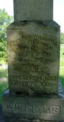 WILLIAMS, JANE - Albany County, New York | JANE WILLIAMS - New York Gravestone Photos