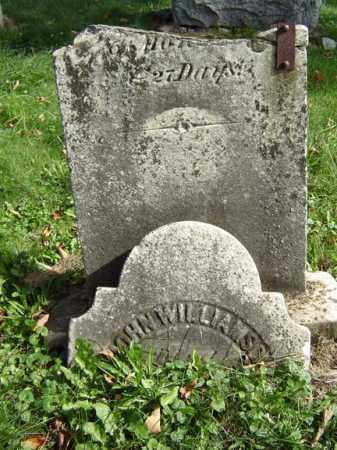 WILLIAMSON, JOHN - Albany County, New York | JOHN WILLIAMSON - New York Gravestone Photos