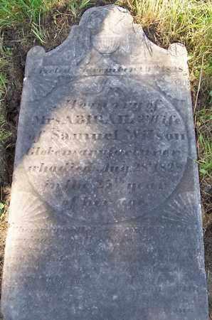 WILSON, ABIGAIL - Albany County, New York | ABIGAIL WILSON - New York Gravestone Photos