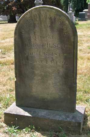 WILSON, WEALTHY ANN - Albany County, New York | WEALTHY ANN WILSON - New York Gravestone Photos