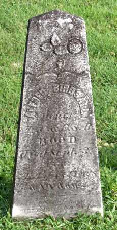 ROOD, ALFRED  BIRDSALL - Broome County, New York   ALFRED  BIRDSALL ROOD - New York Gravestone Photos