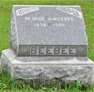 BEEBEE, GEORGE B. - Cayuga County, New York   GEORGE B. BEEBEE - New York Gravestone Photos