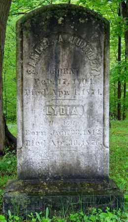 HUNTLEY, LYDIA - Cayuga County, New York | LYDIA HUNTLEY - New York Gravestone Photos
