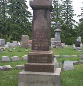 WALL, JAMES - Cayuga County, New York | JAMES WALL - New York Gravestone Photos
