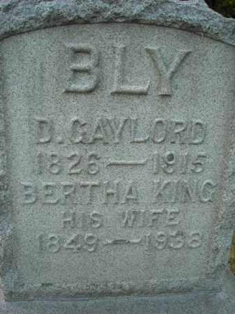 KING, BERTHA - Chautauqua County, New York | BERTHA KING - New York Gravestone Photos