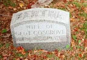 COLLINGWOOD, BERTHA - Chautauqua County, New York | BERTHA COLLINGWOOD - New York Gravestone Photos