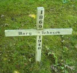 JOHNSON, MARY - Chautauqua County, New York | MARY JOHNSON - New York Gravestone Photos