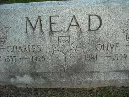 MEAD, CHARLES - Chautauqua County, New York | CHARLES MEAD - New York Gravestone Photos