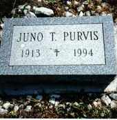 PURVIS, JUNO T. - Chautauqua County, New York | JUNO T. PURVIS - New York Gravestone Photos