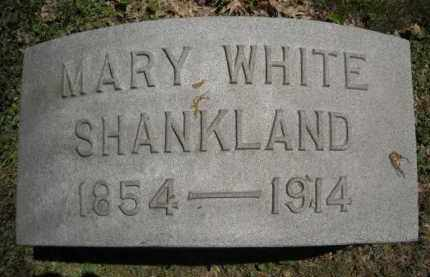 WHITE SHANKLAND, MARY - Chautauqua County, New York | MARY WHITE SHANKLAND - New York Gravestone Photos