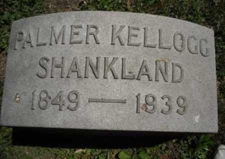 SHANKLAND, PALMER - Chautauqua County, New York | PALMER SHANKLAND - New York Gravestone Photos