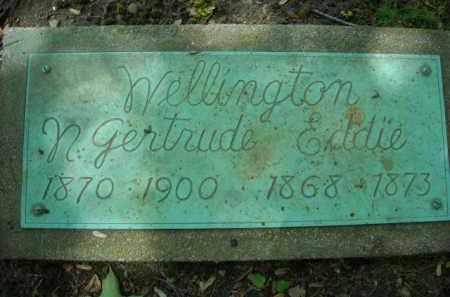 WELLINGTON, EDDIE - Chautauqua County, New York | EDDIE WELLINGTON - New York Gravestone Photos