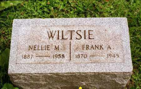 WILTSIE, FRANK - Chautauqua County, New York | FRANK WILTSIE - New York Gravestone Photos