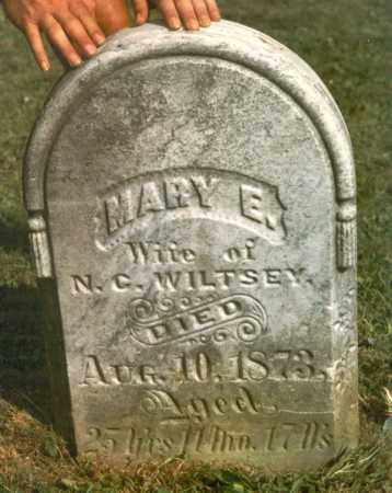 RISLEY, MARY - Chautauqua County, New York | MARY RISLEY - New York Gravestone Photos