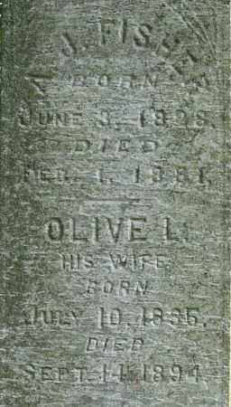 FISHER, OLIVE L. - Chenango County, New York | OLIVE L. FISHER - New York Gravestone Photos
