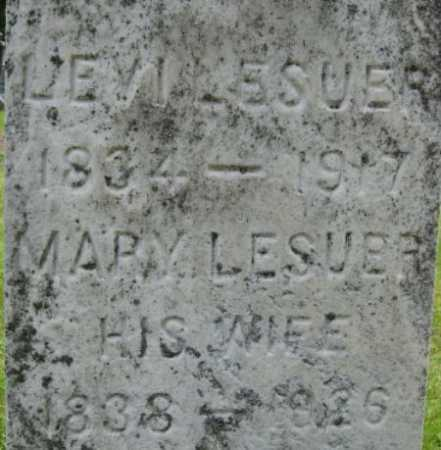 LESUER, MARY - Chenango County, New York | MARY LESUER - New York Gravestone Photos