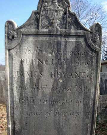 BRYAN, PURNELLY - Columbia County, New York | PURNELLY BRYAN - New York Gravestone Photos