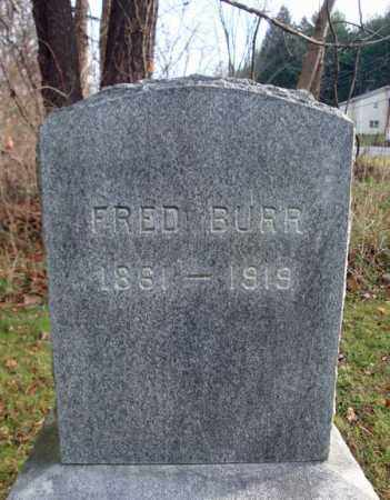 BURR, FRED - Columbia County, New York | FRED BURR - New York Gravestone Photos
