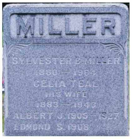 MILLER, CELIA - Columbia County, New York | CELIA MILLER - New York Gravestone Photos
