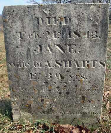 SHARTS, JANE - Columbia County, New York | JANE SHARTS - New York Gravestone Photos