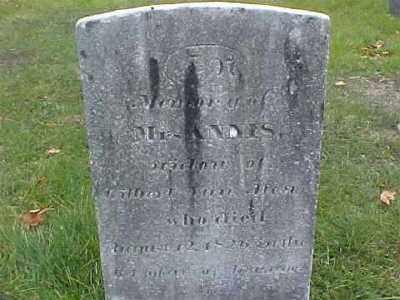 MOORE VAN ALEN, ANNIS - Columbia County, New York | ANNIS MOORE VAN ALEN - New York Gravestone Photos