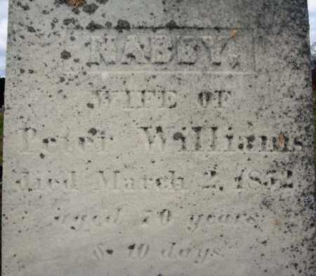 WILLIAMS, NABBY - Columbia County, New York | NABBY WILLIAMS - New York Gravestone Photos