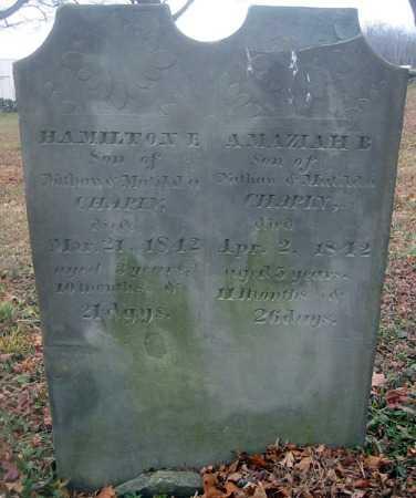 CHAPIN, AMAZIAH B. - Cortland County, New York | AMAZIAH B. CHAPIN - New York Gravestone Photos