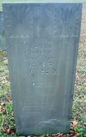 CHAPIN, LESTER - Cortland County, New York   LESTER CHAPIN - New York Gravestone Photos