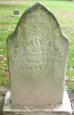 BAILEY, CHAUNCEY - Dutchess County, New York | CHAUNCEY BAILEY - New York Gravestone Photos