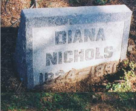 NICHOLS, DIANA - Erie County, New York | DIANA NICHOLS - New York Gravestone Photos