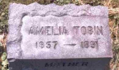 HOSKEN TOBIN, AMELIA - Erie County, New York | AMELIA HOSKEN TOBIN - New York Gravestone Photos