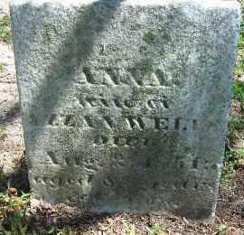 WELLS, ANNA - Erie County, New York | ANNA WELLS - New York Gravestone Photos