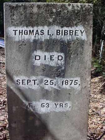 BIBBEY, THOMAS L - Essex County, New York | THOMAS L BIBBEY - New York Gravestone Photos