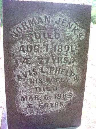 JENKS, AVIS L - Essex County, New York | AVIS L JENKS - New York Gravestone Photos