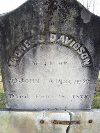 DAVIDSON, AGNESS - Fulton County, New York   AGNESS DAVIDSON - New York Gravestone Photos