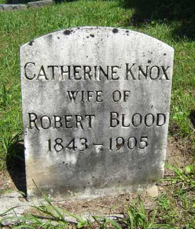 KNOX BLOOD, CATHERINE - Fulton County, New York | CATHERINE KNOX BLOOD - New York Gravestone Photos