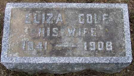 COLE, ELIZA - Fulton County, New York | ELIZA COLE - New York Gravestone Photos