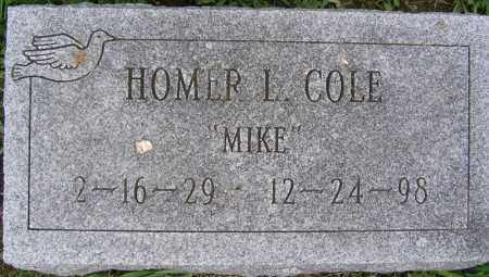 COLE, HOMER L - Fulton County, New York | HOMER L COLE - New York Gravestone Photos