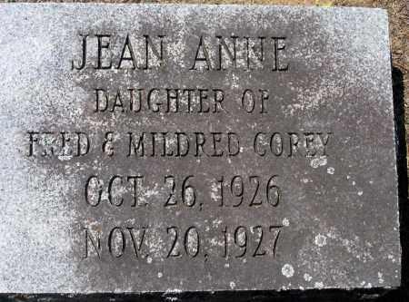 COREY, JANE ANNE - Fulton County, New York | JANE ANNE COREY - New York Gravestone Photos