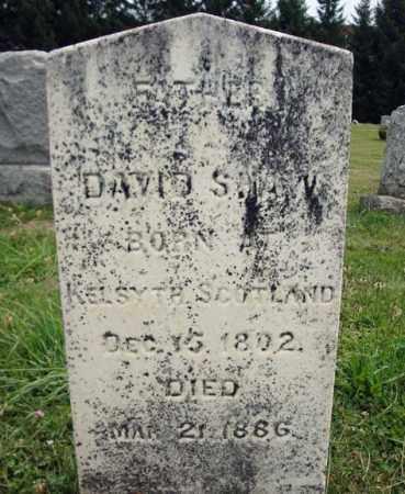 SHAW, DAVID - Fulton County, New York | DAVID SHAW - New York Gravestone Photos
