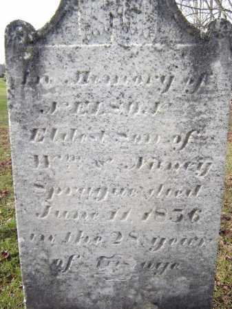 SPRAGUE, NELSON - Fulton County, New York | NELSON SPRAGUE - New York Gravestone Photos