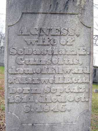 REID, AGNESS - Fulton County, New York   AGNESS REID - New York Gravestone Photos