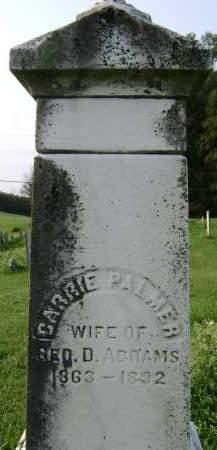 PALMER, CARRIE - Greene County, New York | CARRIE PALMER - New York Gravestone Photos