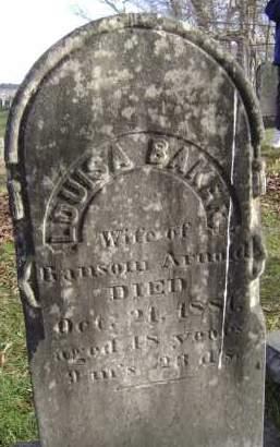 BAKER ARNOLD, LOUISA - Greene County, New York | LOUISA BAKER ARNOLD - New York Gravestone Photos