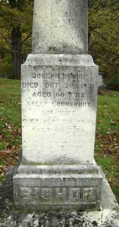BISHOP, JOSEPH - Greene County, New York | JOSEPH BISHOP - New York Gravestone Photos