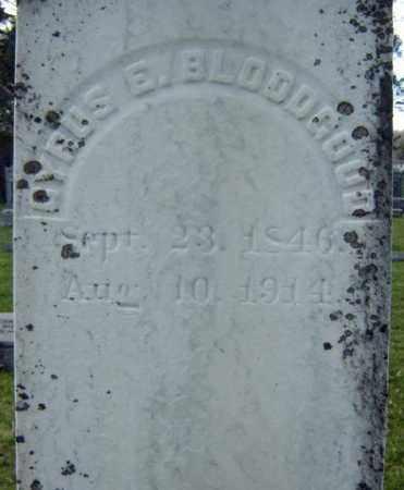 BLOODGOOD, CYRUS E - Greene County, New York | CYRUS E BLOODGOOD - New York Gravestone Photos