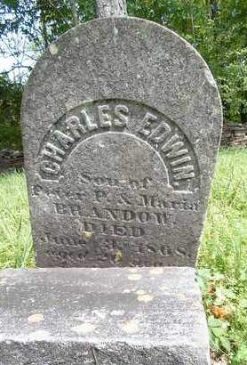 BRANDOW, CHARLES EDWIN - Greene County, New York | CHARLES EDWIN BRANDOW - New York Gravestone Photos