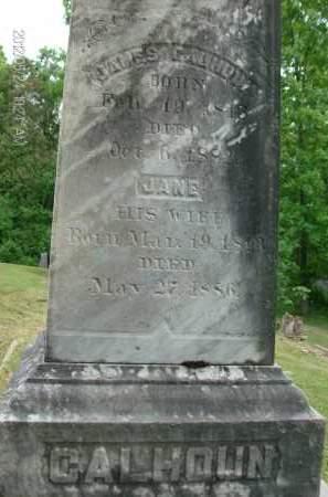 CALHOUN, JANE - Greene County, New York   JANE CALHOUN - New York Gravestone Photos