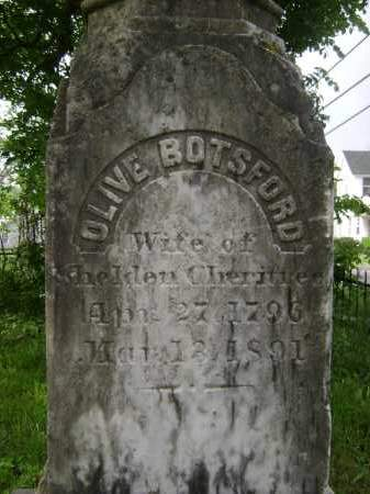 BOTSFORD CHERITREE, OLIVE - Greene County, New York | OLIVE BOTSFORD CHERITREE - New York Gravestone Photos