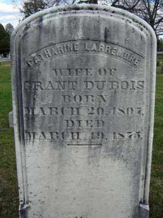 LARREMORE, CATHARINE - Greene County, New York | CATHARINE LARREMORE - New York Gravestone Photos
